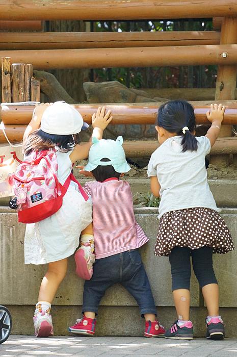 友達と動物園