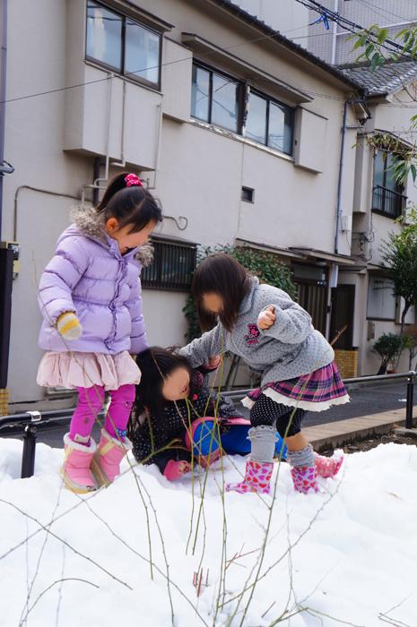 公園 雪遊び 東京
