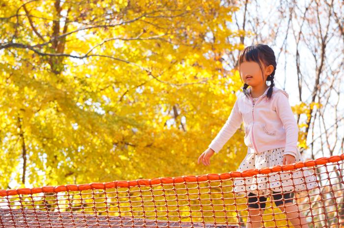 昭和記念公園 ネットの森