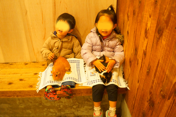 上野動物園 ふれあいどうぶつコーナー
