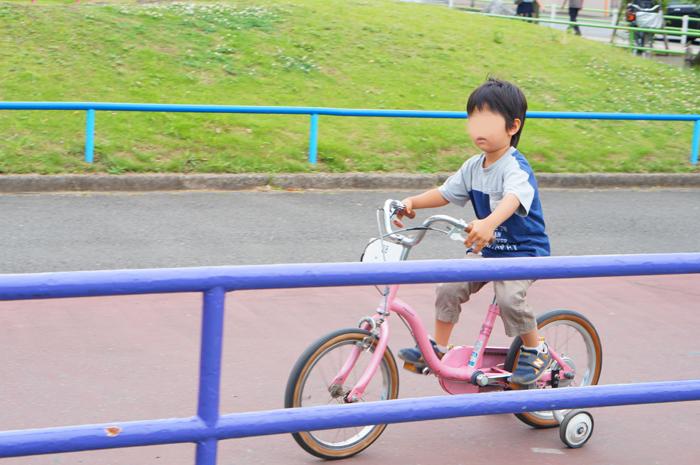 萩中公園 自転車 長男