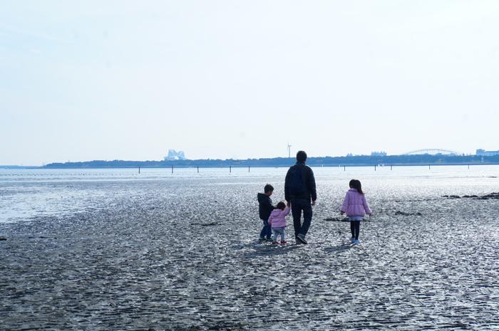 海岸 散歩
