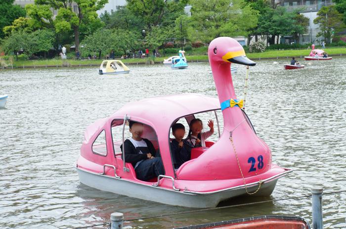 上野 スワン ボート